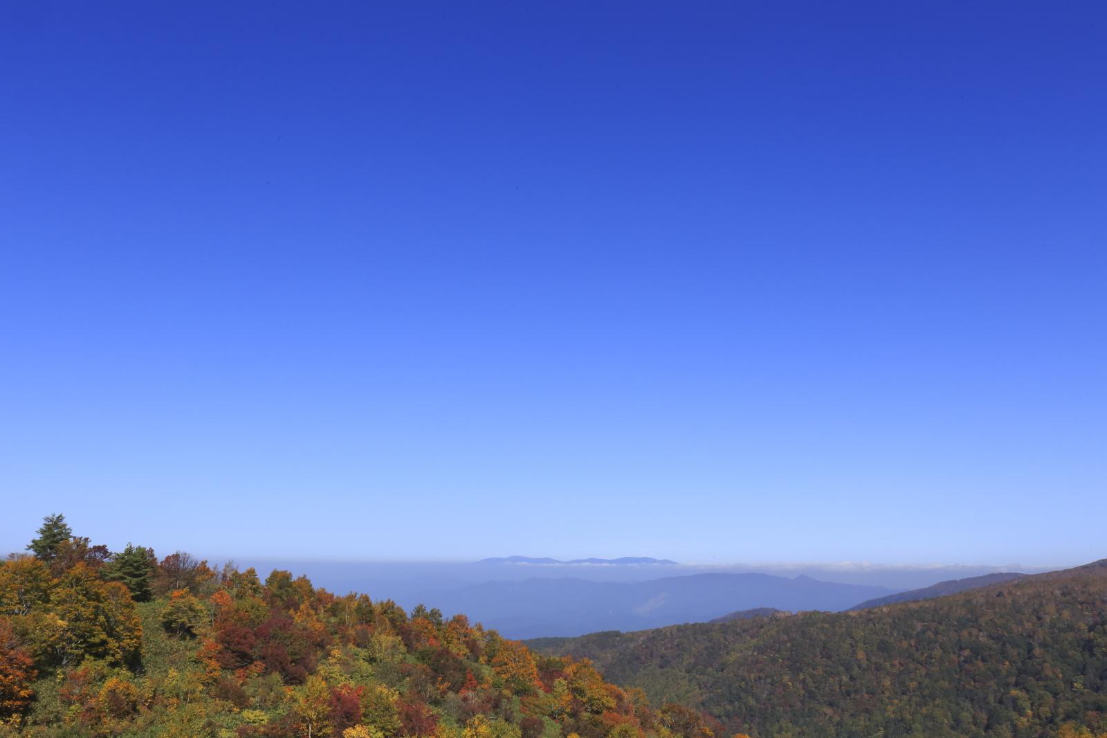 天元台からの眺めは最高