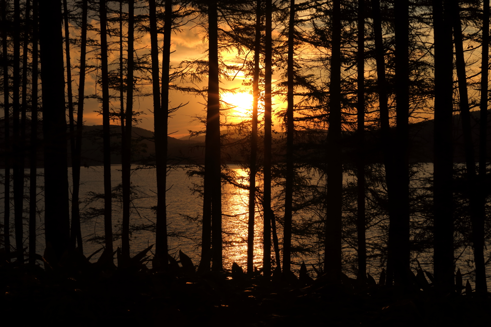 岩洞湖の夕景