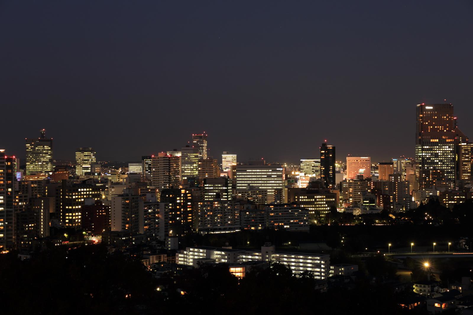 仙台城からの夜景