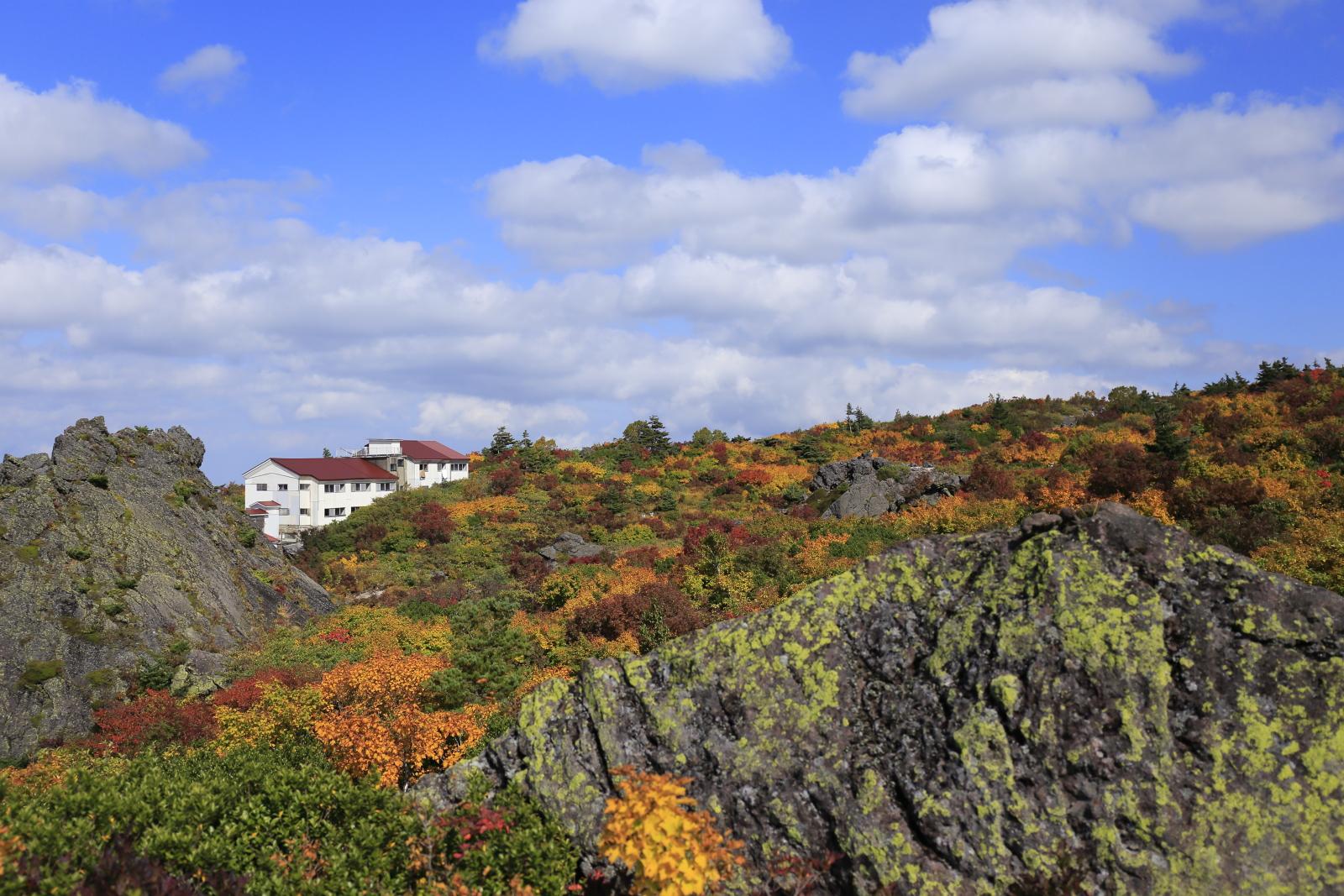 栗駒山荘近辺の紅葉